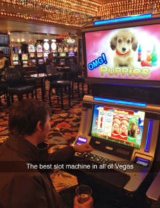 puppy-slots